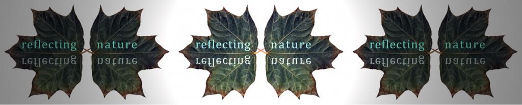 low-res-multi-leaf-image1