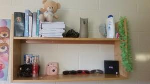 Shelves in Accommodation